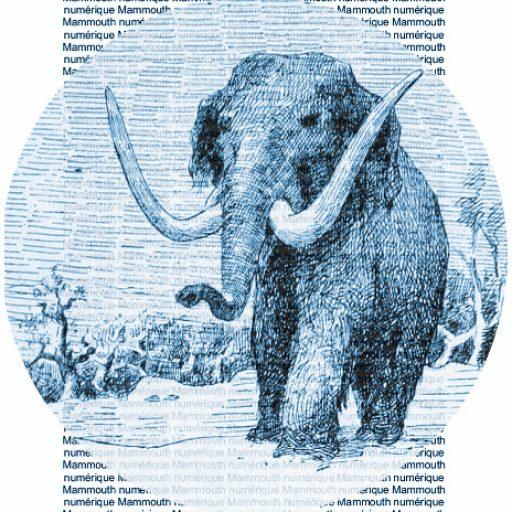 cropped-logo-5-b-petit-mammouth.jpg