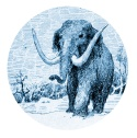 Logo 2 léger 800 x 800 P Jamin Mammouth copie